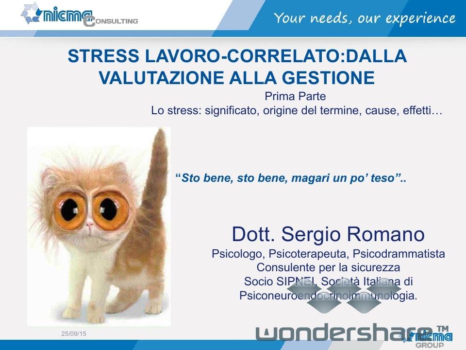 Presentazione Stress sergio elisa.pdf_page_02